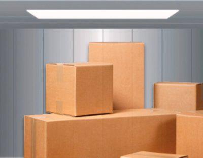 lắp đặt thang máy tảı hàng cho nhà máy sản xuất employee photograph